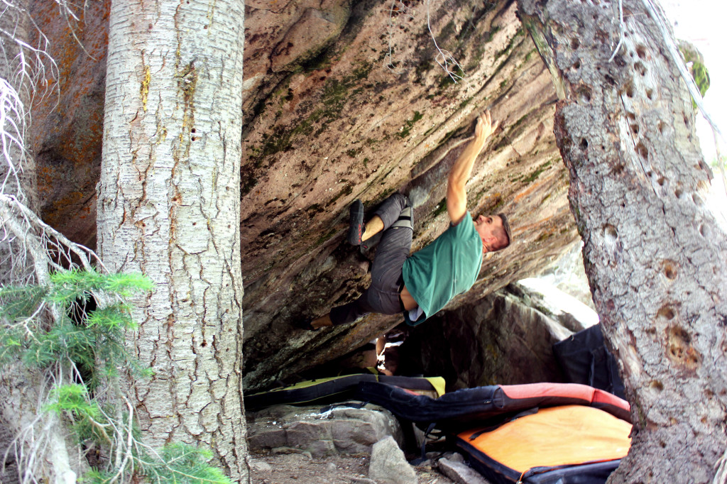 "Larson Quick Bouldering ""Biceptual"" V11"