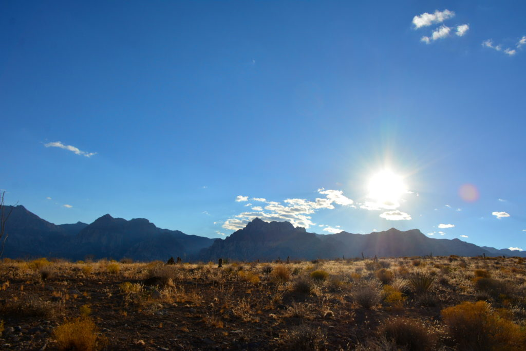 mid day sun when climbing red rocks NV