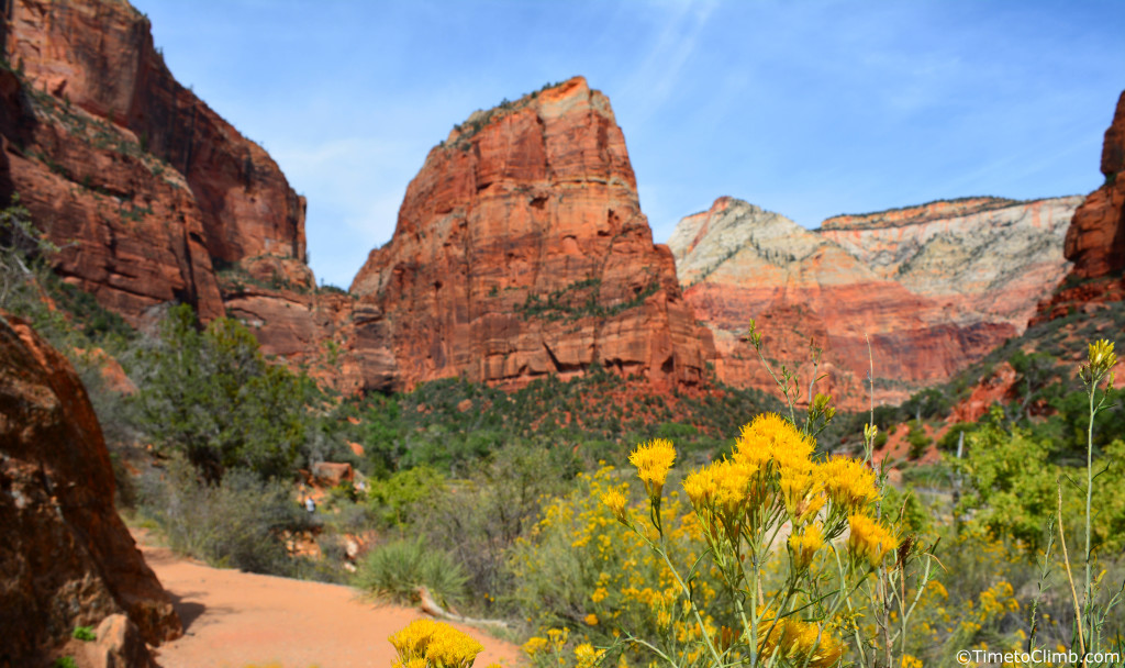 Angel's Landing from the valley floor in Zion National Park