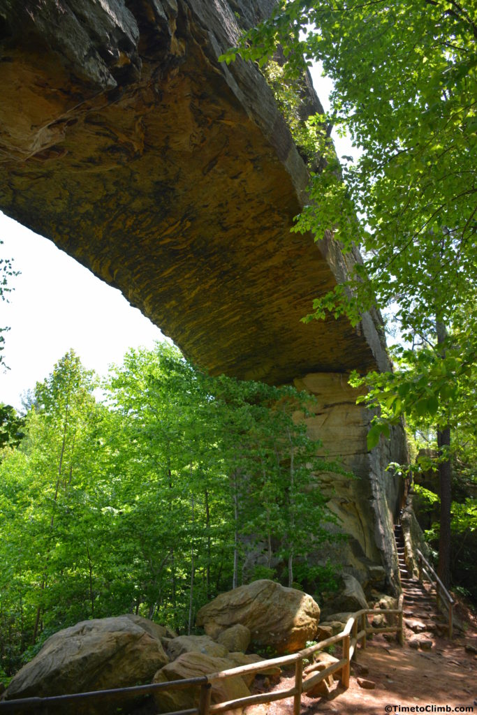 Hiking Natural Bridge In Red River Gorge