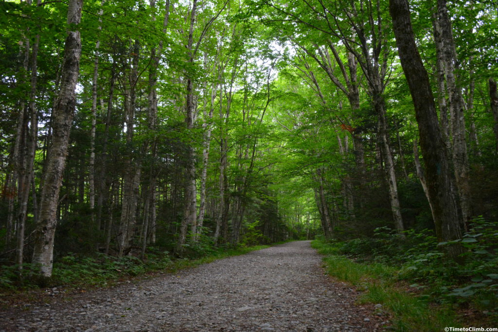 CCC road in Underhill State Park start of hiking Mount Mansfield Vermont