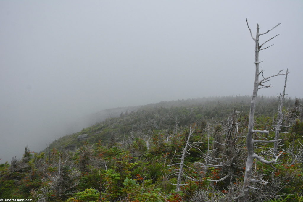 Fog along the Sunset Ridge Trail hiking up Mt. Mansfield VT