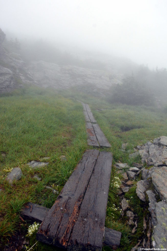 Wooden pathway entering into the Alpine Arctic Tundra hiking Mount Mansfield Vermont