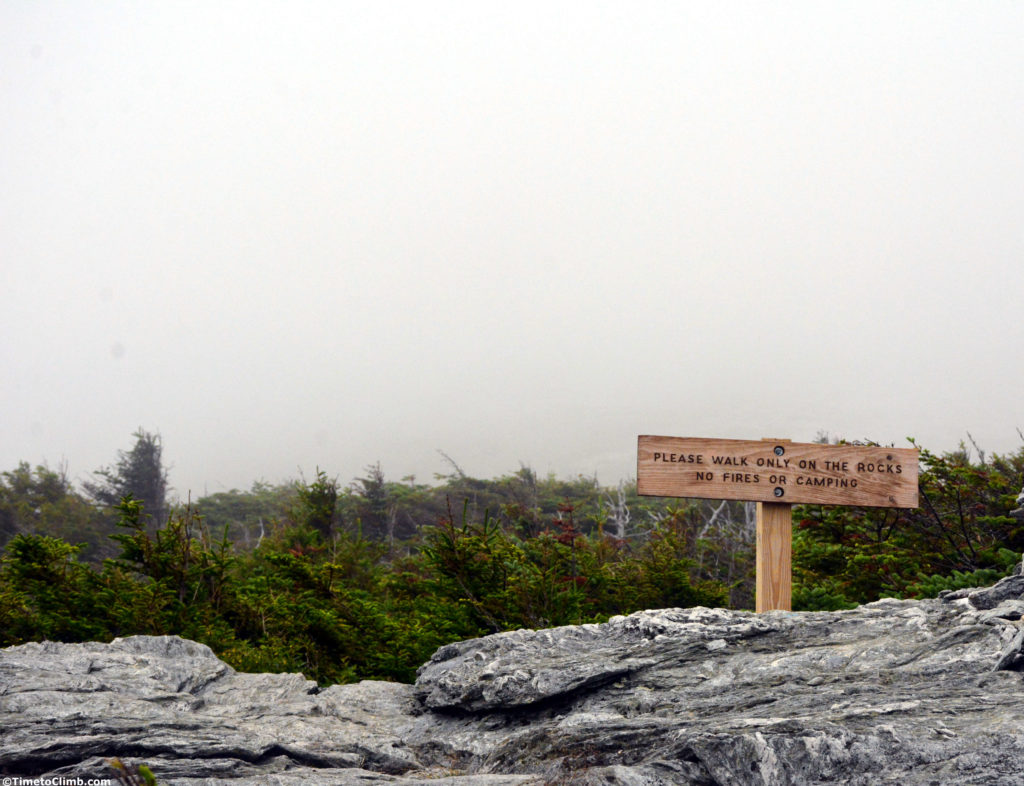 stay on the rocks above treeline in the Alpine zone Mount Mansfield VT camping