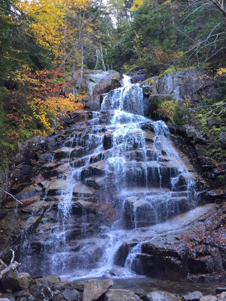 Cloudland Falls is eighty feet in height and is the largest waterfall you'll encounter on the Falling Waters trail. When you arrive at this junction, you are 1.4 miles into the hike.
